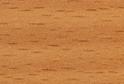 Бук Бавария R5111