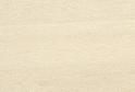 Клен Джерсей R3104