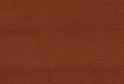 Груша дикая R4967