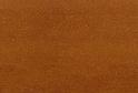Яблоня Локарно R4974