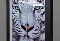 Встроенный шкаф-купе с фотопечатью Тигр