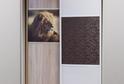 Левая дверь – комбинация  ЛДСП и  фотопечати на ЛДСП