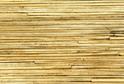 3521/S Тростник морской