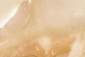 2411/S (3026) Оникс серый