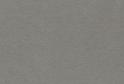 4537/S (5013) Платина